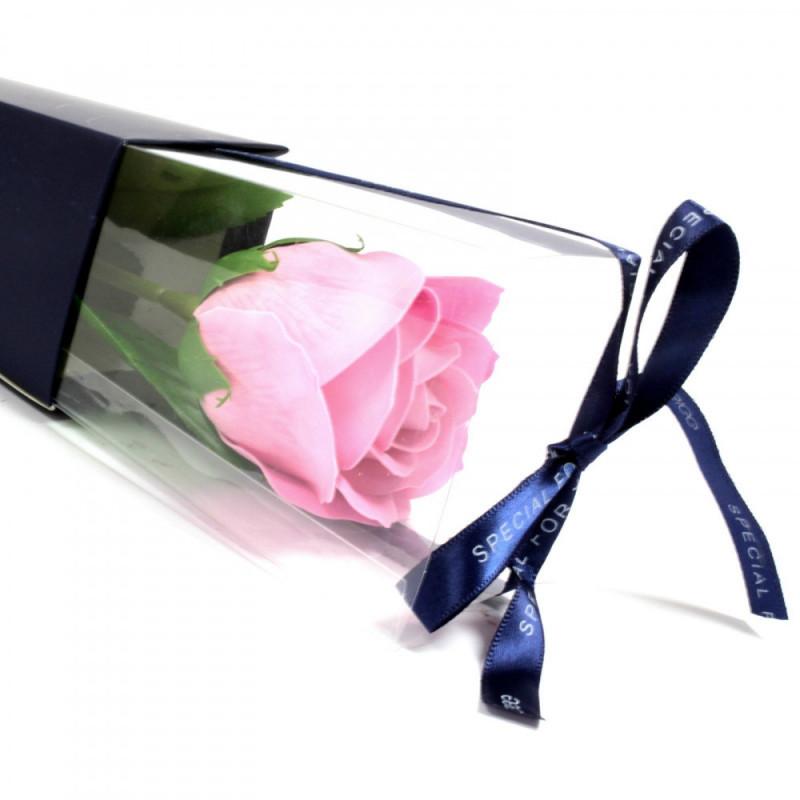 Single Rose - Pink Rose