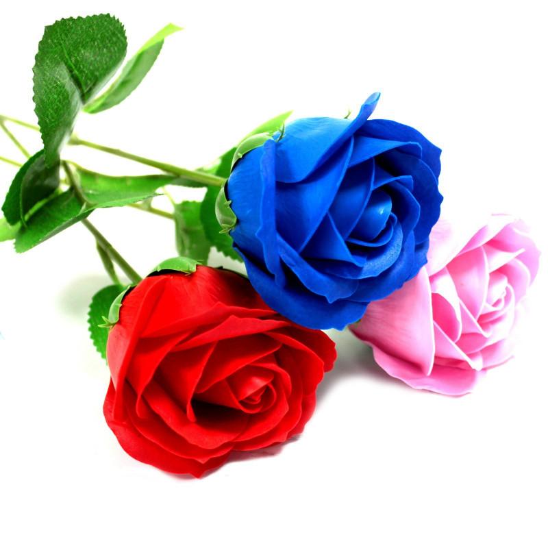 Üksik roos, Punane