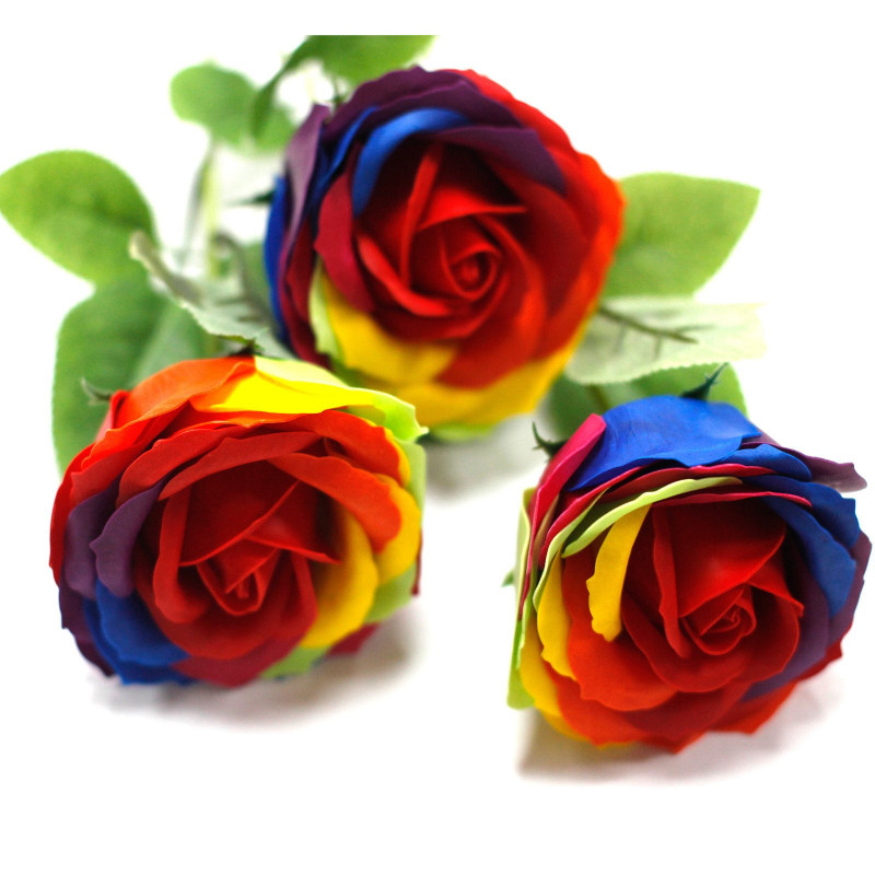 Üksik roos, Vikerkaar