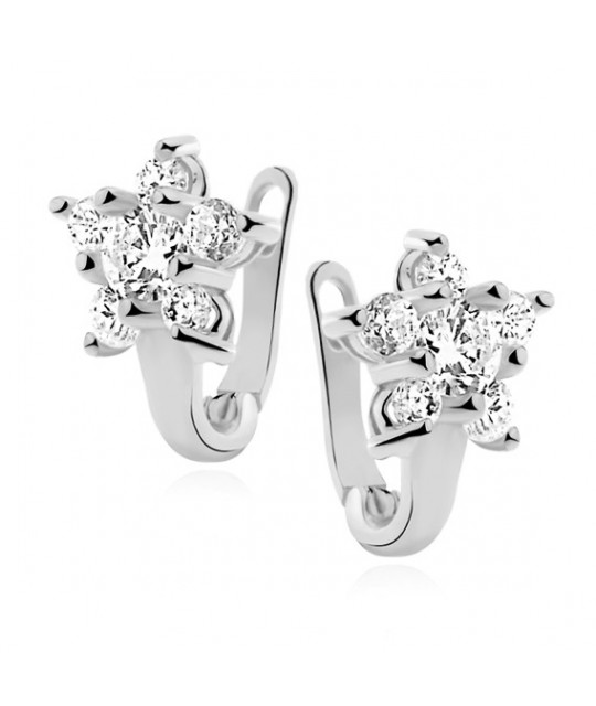 Silver earrings, Flower